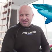 Lider Disturbed nurkował w klatce wśród rekinów