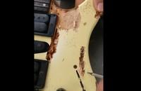 Gitara pełna robaków