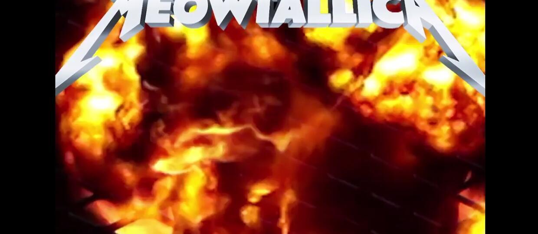 Metallica w kociej wersji