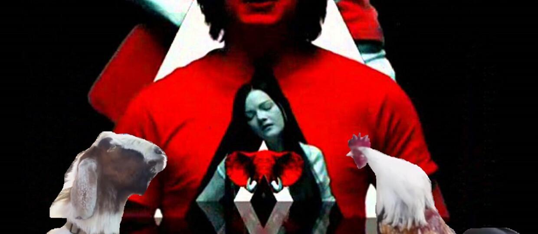 Utwór The White Stripes w zwierzęcym coverze