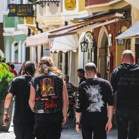 Fani metalu
