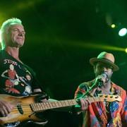 Sting i Shaggy zagrają w Polsce w 2018