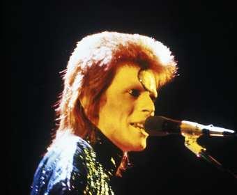 Angielskie miasto zmieni nazwę na cześć Davida Bowiego?