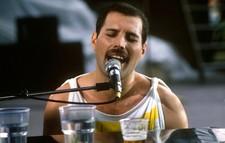 Czy wiesz wszystko o Freddiem Mercurym? [QUIZ]