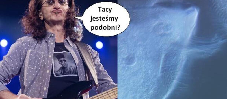 """""""Długowłose"""" mikroby nazwane na cześć muzyków Rush"""