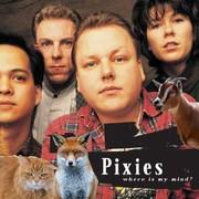 Jak brzmi utwór Pixies w zwierzęcym coverze?