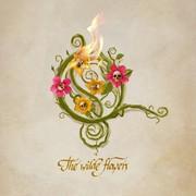 """Opeth udostępnił singiel """"The Wilde Flowers"""""""