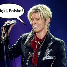 Polacy wśród największych fanów Davida Bowiego na Spotify