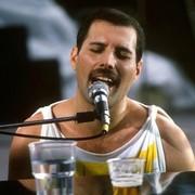 Freddie Mercury/Queen