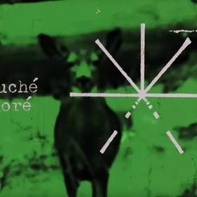 """Touché Amoré udostępnił nowy utwór """"Green"""""""