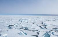 lód na morzu arktycznym