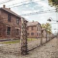 Homoseksualiści w nazistowskich obozach koncentracyjnych
