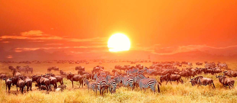 Nad Afryką pojawiło się pięć słońc jednocześnie