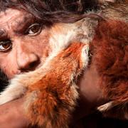 Naukowcy odkryli w Polsce szczątki neandertalczyków