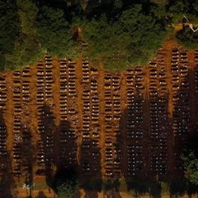 Przerażające zdjęcia masowych grobów w Brazylii. Kraj nie radzi sobie z epidemią koronawirusa