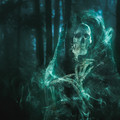 Przerażający las w Kędzierzynie-Koźlu