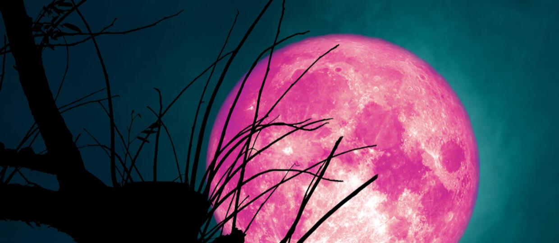 Pełnia Truskawkowego Księżyca
