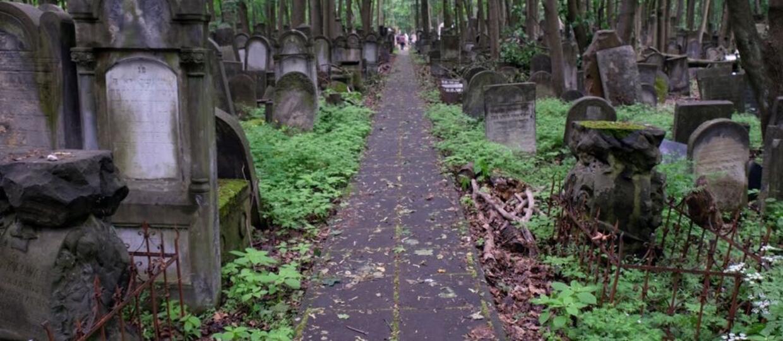 Wulgarny napis na grobie zwraca uwagę Poznaniaków. Czy zmarli na pewno chcieli takiego rozgłosu?