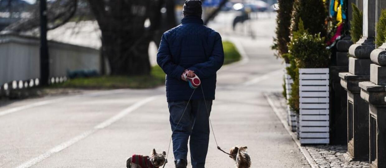 Nie mogli wyjść z domu z powodu kwarantanny. Postanowili wypożyczyć psa, by obejść przepisy