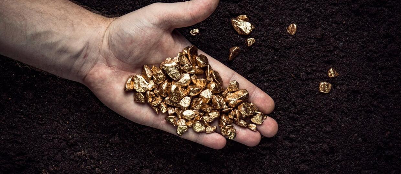 grudki złota w ręce