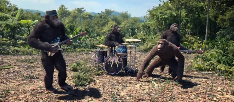 Małpie figle Coldplay