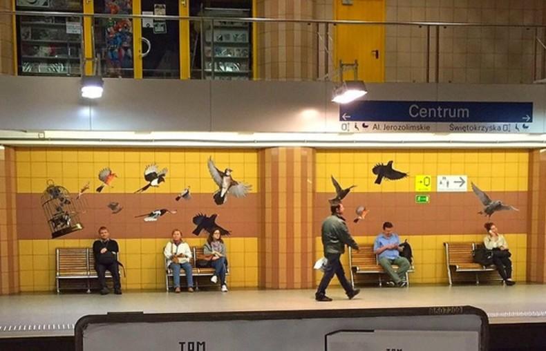 Ptaki na stacji w Warszawie