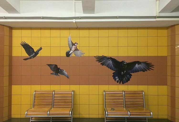 Ptaki z płyty Gilmoura