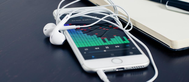 Jak Polacy kupowali muzykę w 2015 roku?