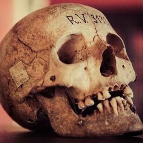 Powstała sztuczna inteligencja do przepowiadania śmierci
