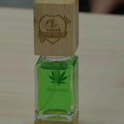 perfumy Cannabis Stal Rzeszów