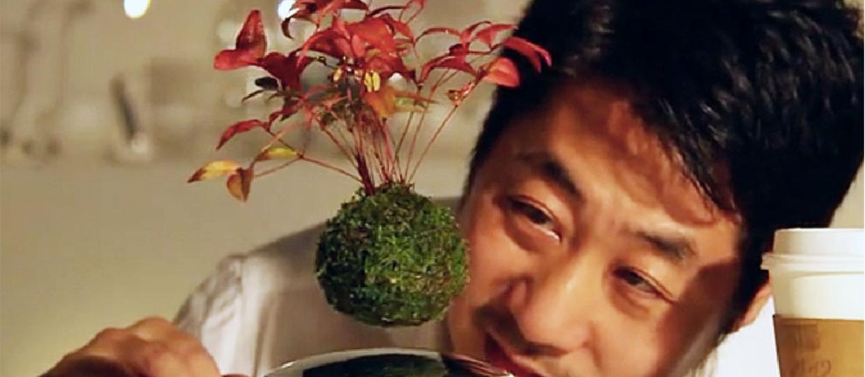 Air Bonsai - Lewitujący ogród, czyli nowy cud świata