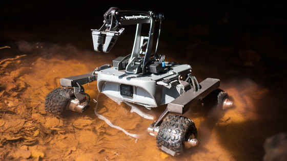 turtle-rover-in-the-lake-2