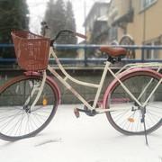 Damski rower miejski z Biedronki S'moove Martha